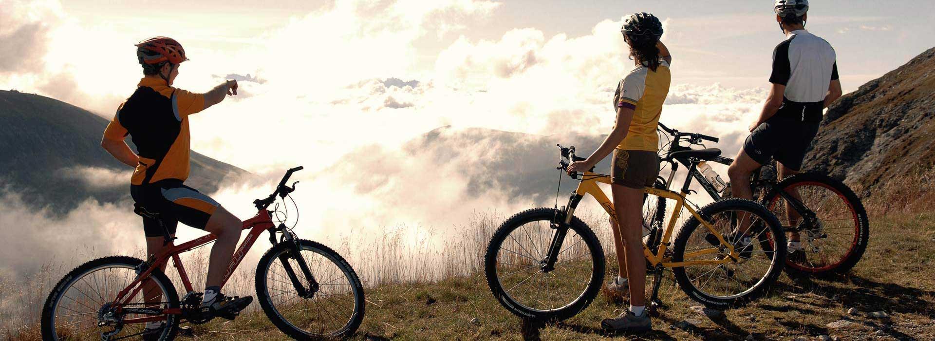 Tempo Libero Sport Bike